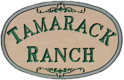 Tamarack Boarding Ranch